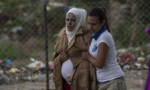 مساعدات الحمل للاجئين في المانيا